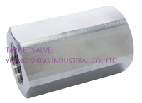 1-PC HIGH PRESSURE CHECK VALVE