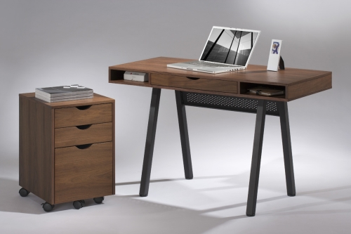 writing Desks/Computer desk/moveable file cabinet