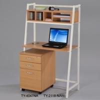 Computer Racks / File Cabinet