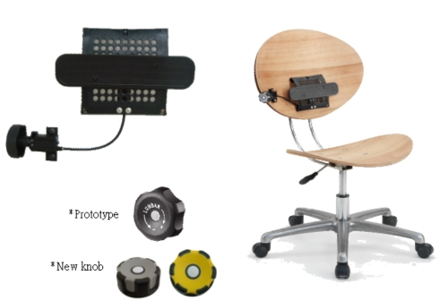 2WAY Adjustable lumbar support mechanism