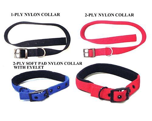 Buckle Collars