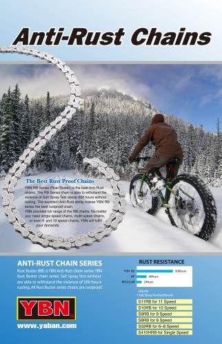 Anti-Rust Chain