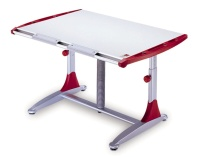 CAMBRIDGE ERGONOMIC DESK