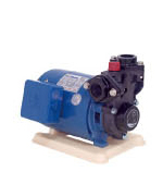 TP3-P-Series Direct Water Pump