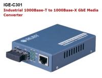 IGE-C301