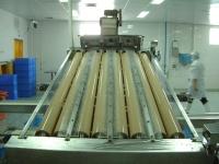 Shrimp grading machine