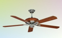 Ceiling Fan Lights