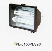Fluorescent Floodlight