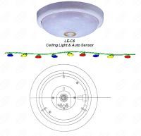 Ceiling Light & Auto Sensor