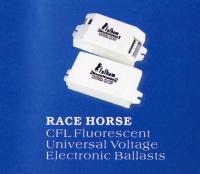 Race Horse