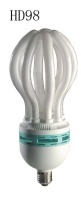 Compact Fluorescent Lamps