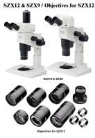 实体显微镜