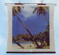 Car sunshades with picture