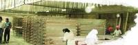 EPnS环安 环保水性木器漆 - 室内用涂料系列