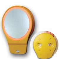 cosmetics mirror