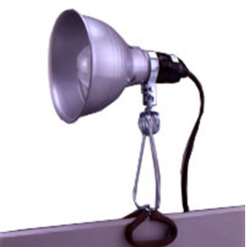 Working Lamp,Clamp Lamp
