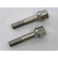 Titanium auto wheel bolt