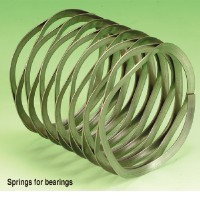 Springs for bearings