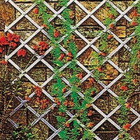 Folding Decorative Trellis